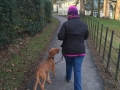 LILY WALKING.jpg